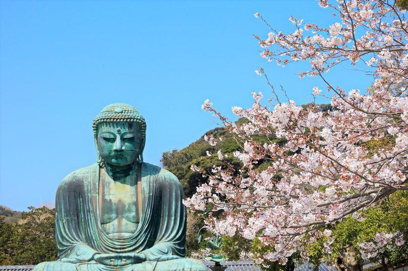 เที่ยวเมืองคะมะคุระ ไหว้พระใหญ่ไดบุตสึ และเพลิดเพลินกับที่เที่ยวมากมาย